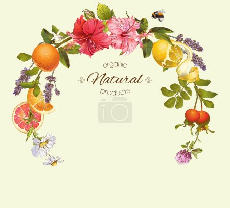 Illustration for Vector natural round frame with hibiscus flowers, citrus fruits and rose hip. Design for tea, juice, natural cosmetics, baking,candy and sweets,grocery,health care products. With place for text. - Royalty Free Image