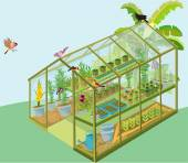 Plants Are In the Greenhouse