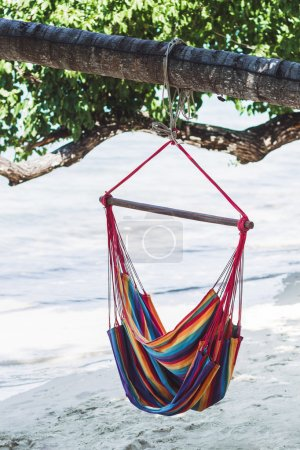 Hammock in a tree on the beach