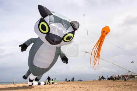 Kites of animal and fish shape