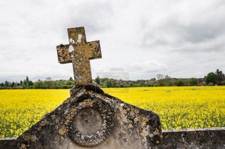 Tombstone cross against rape field