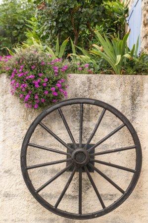 Photo pour Roue en bois sur le mur avec des fleurs roses, Sainte Croix du Verdon, Provence, France - image libre de droit