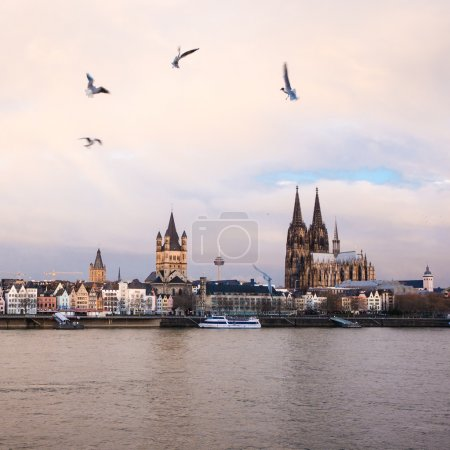 Koeln panorama and river Rhine