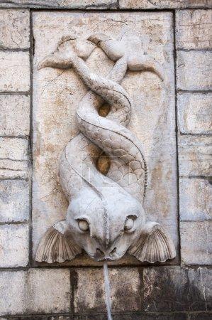 Photo pour Ancienne fontaine formée par deux poissons, Boulogne sur mer, France - image libre de droit