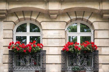 Typical Parisian windows