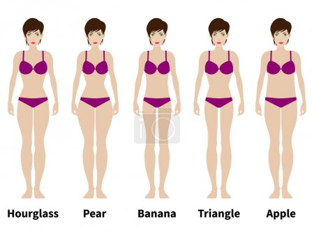 Illustration for Vector illustration of five types of female figures. Women physique. Isolated on white background. A variation of the female body. - Royalty Free Image