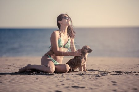 Photo pour Young woman playing with dog pet on beach during sunrise or sunset.Girl and dog having fun on seaside.Cute neglected stray dog adopted by caring woman.Funny animal - image libre de droit