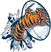 Vector cartoon clip art illustration of a tiger mascot paw ripping out of the background gripping a rugby ball and tearing it with its claws