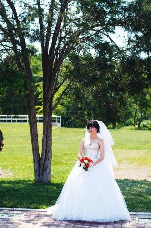 Beautiful bride outdoors - soft focus. Portrait of a beautiful g