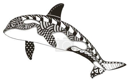 Killer whale zentangle stylized, vector, illustration, freehand pencil, hand drawn, pattern, orca. Pattern. Zen art.