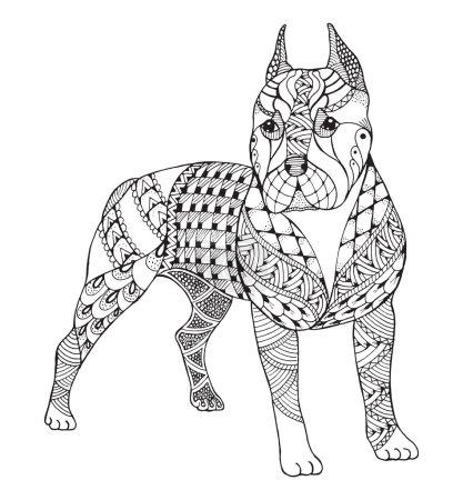 Pit bull terrier zentangle stylized, vector, illustration, freeh