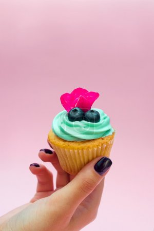 Cupcakes with butter cream and vanilla with blueberry with pink flowers on the hand on pink background