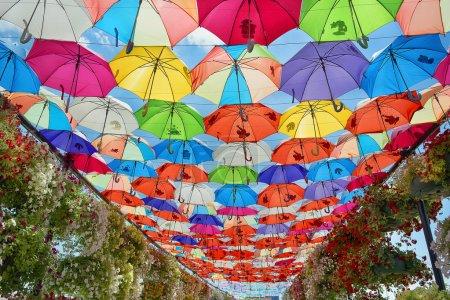 Colorful umbrellas background.
