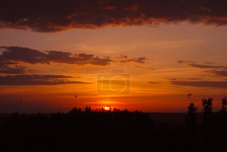 Photo for Dark red sunset with clouds in summer evening - Royalty Free Image