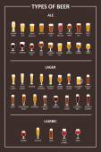 A visual guide to the types of beer Various types of beer in recommended glasses Vector illustration