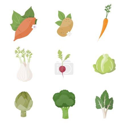 Garden fresh vegetables set