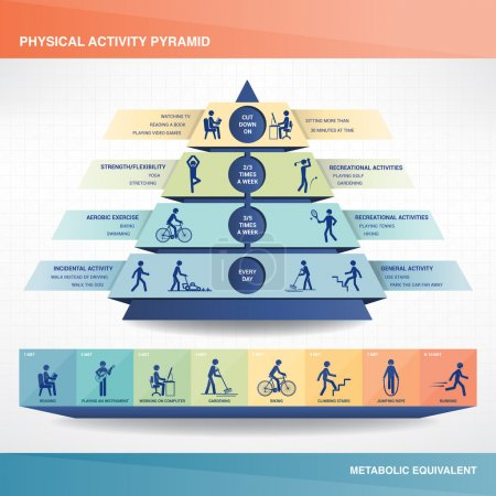 Illustration for Physical activity pyramid, stick figures exercising and text - Royalty Free Image