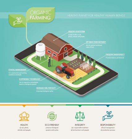 Illustration for Organic farming principles, environmental care and food production infographic - Royalty Free Image
