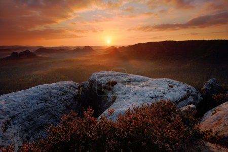 Photo pour Kleiner Winterberg, belle vue du matin sur une falaise de grès dans une profonde vallée brumeuse en Saxe Suisse, Allemagne - image libre de droit