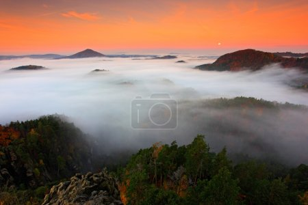 Photo for Cold misty foggy morning in a fall valley of Bohemian Switzerland - Royalty Free Image