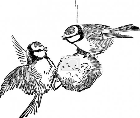 Photo pour Vieux livre, illustration - image libre de droit