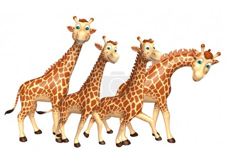 group of Giraffe collection