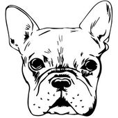 Graphic vector illustration of French Bulldog Isolated Vector Dog Portrait