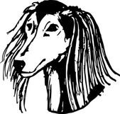 Greyhound Dog Portrait Graphic Pencil Illustration of Saluki Hand Drawn Vector Dog Head on white background Hand Drawn art sketch of Saluki Breed