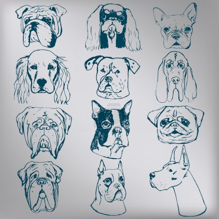 Elements for Logo. Set of vector dogs.