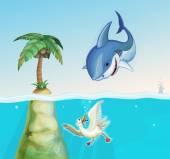 shark hunts seagull