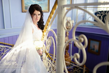 young luxurious brunette bride
