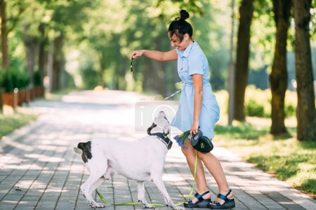 Photo for Beautiful caucasian girl trains her beautiful black-and-white big dog in the garden in the summer - Royalty Free Image