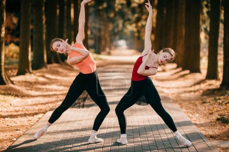 Photo for Two elegant female ballet dancers stretching out and posing in park valley - Royalty Free Image