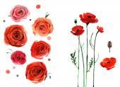 Aquarell Blume Set, handbemalt zeichnen