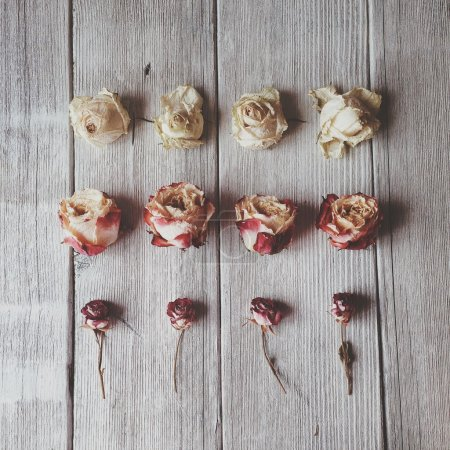 Roses at wooden table