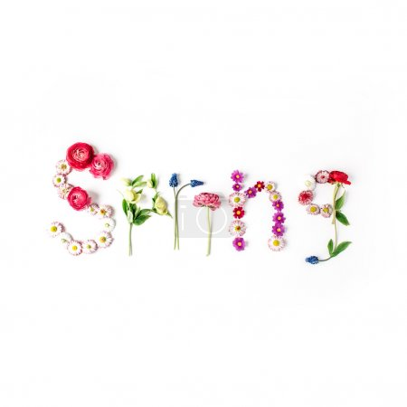 word spring isolated on white
