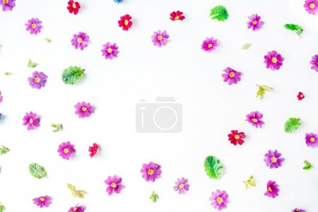 Photo for Wreath frame with wildflowers isolated on white background. flat lay, overhead view - Royalty Free Image