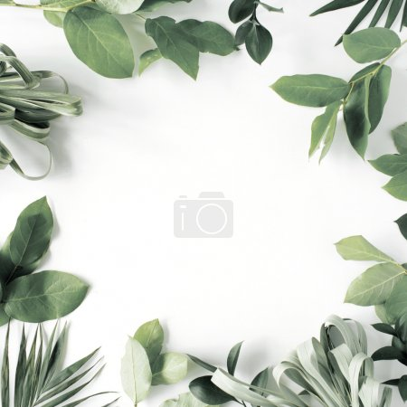 Photo for Frame with flowers, branches, leaves and petals isolated on white background. flat lay, overhead view - Royalty Free Image