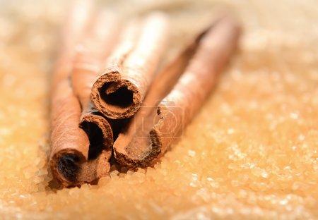 cinnamon sticks on sugar