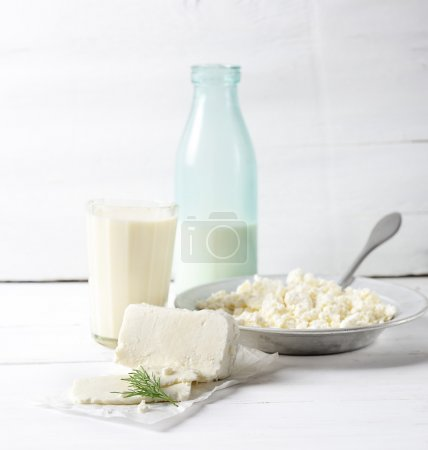fresh cottage cheese in white plate
