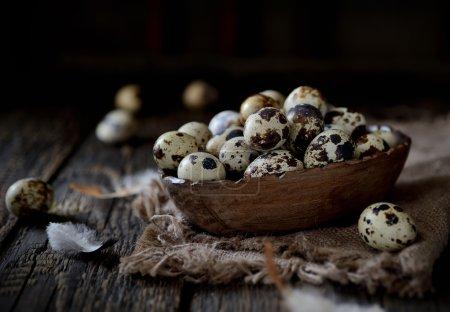 organic fresh quail eggs