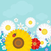 Summer background with flowers and ladybirds Positive vector illustration