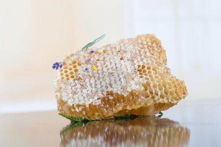 Sweet yellow honeycomb