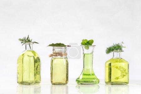 Photo pour Diverses bouteilles d'huiles essentielles et des essences de plantes fraîches - image libre de droit