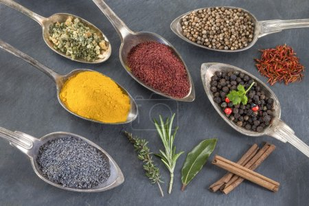 Photo for Metal spoons with various ground spices and herbs - Royalty Free Image