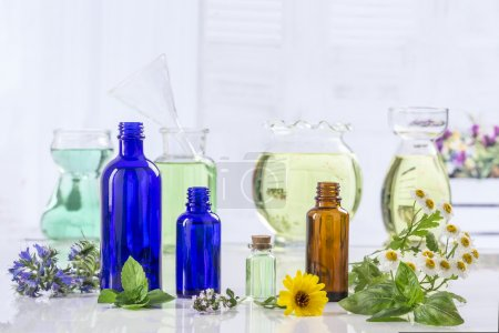 Photo pour Herbes collection de plantes et fleurs vertes fraîches et la chaudière d'huile essentielle - image libre de droit