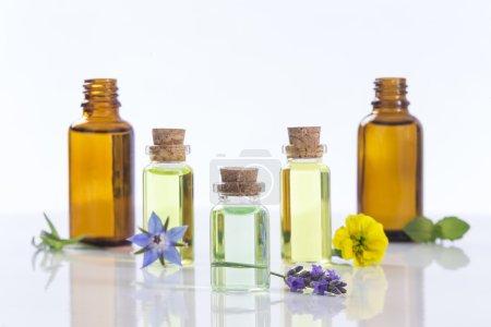 Photo pour Huiles essentielles et herbes de fleurs médicales sur blanc - image libre de droit