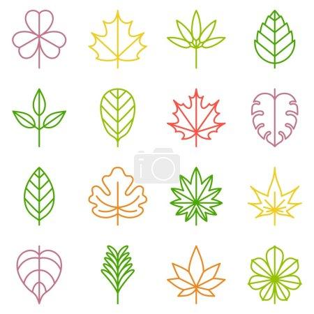 zestaw ikon liść