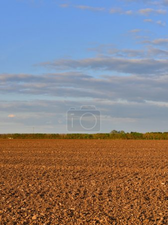 Farm Landscape of Ploughed Earth