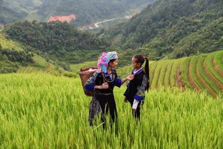 Photo for Woman farmer carry basket on shoulder work on rice terrace with her daughter - Royalty Free Image